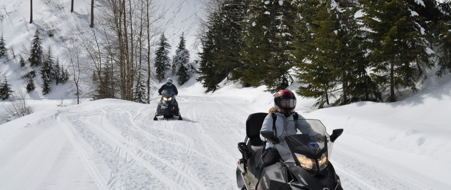 Canyon Creek Guided Snowmobile Trail Tours
